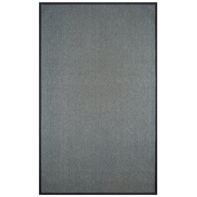 Marica Synthetic Sisal Charcoal Area Rug Size: 4 x 6