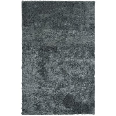 Fluffy Charcoal Area Rug Rug Size: 5 x 7