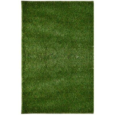 Green Indoor/Outdoor Area Rug Rug Size: 8 x 10
