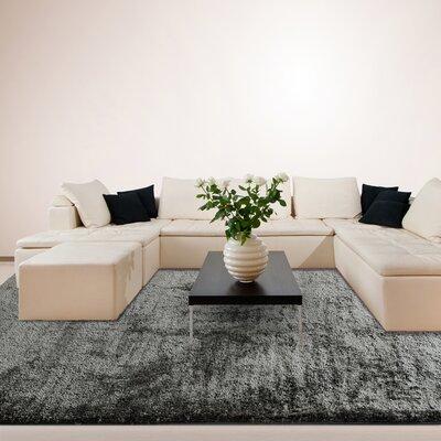 Fur Charcoal Shag Area Rug Rug Size: 6 x 9