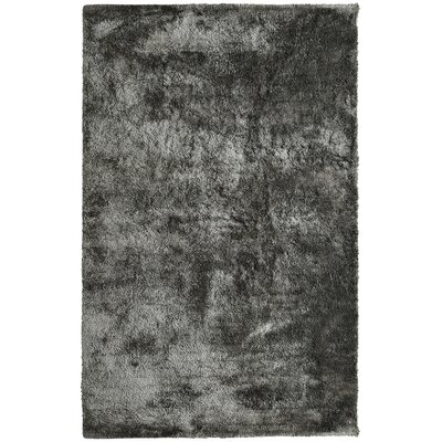 Fur Charcoal Area Rug Rug Size: 6 x 9