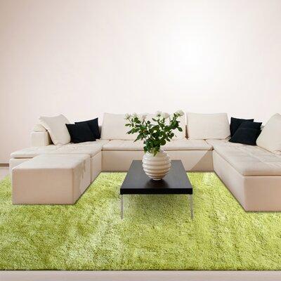 Fur Green Shag Area Rug Rug Size: 6 x 9