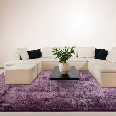 Fur Purple Shag Area Rug Rug Size: 6 x 9