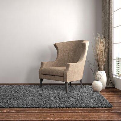 Shag-Ola Charcoal Area Rug Rug Size: 8' x 10'