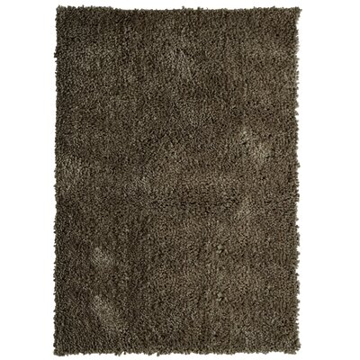 Downy Shag Taupe Area Rug Rug Size: 5 x 8