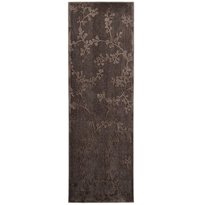 Merengue Brown Area Rug Rug Size: Runner 26 x 78