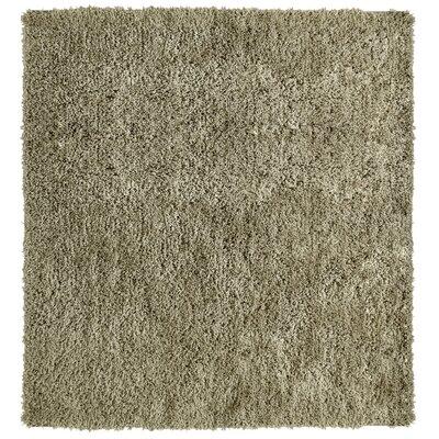 Soft Shag Taupe Area Rug Rug Size: Square 5
