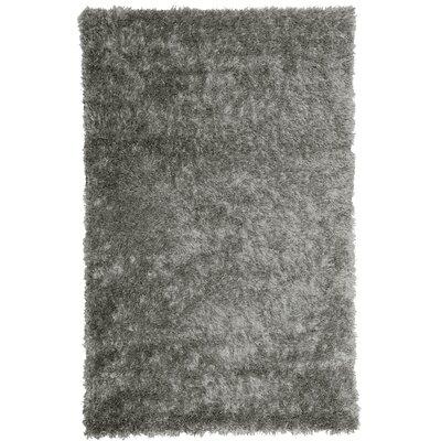 Bachata Stone Area Rug Rug Size: 6 x 8