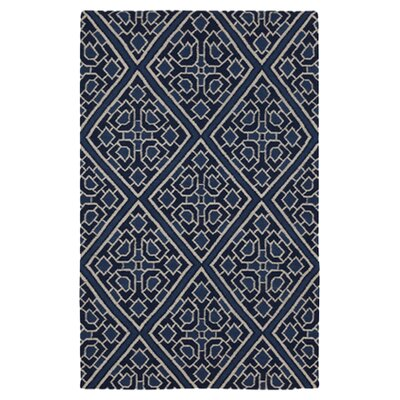 Alameda Hand woven Blue Area Rug Rug Size: Rectangle 5 x 8