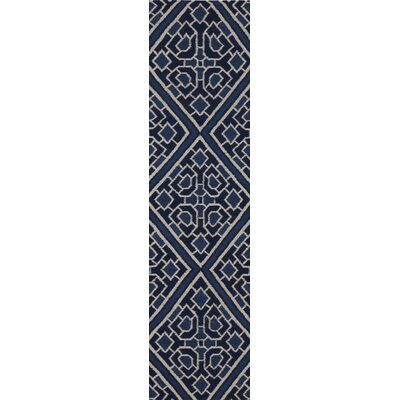 Alameda Hand woven Blue Area Rug Rug Size: Runner 26 x 8