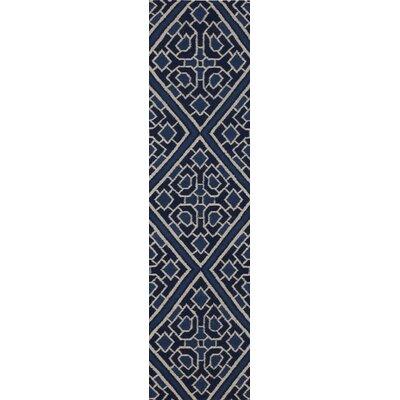 Alameda Hand woven Blue Area Rug Rug Size: Runner 26 x 8