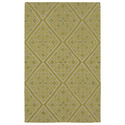 Fremont Hand woven Green Area Rug Rug Size: Rectangle 33 x 53