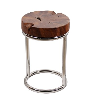 Teak Stainless Steel End Table