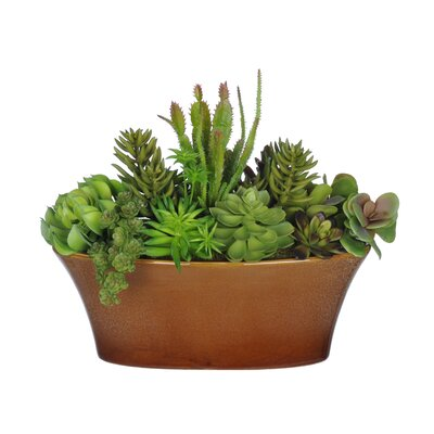 Artificial Succulent Desk Top Plant in Decorative Vase