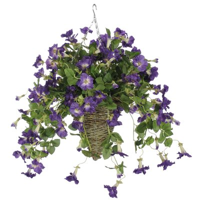Petunia Hanging Plant in Beehive Basket Flower Color: Purple HF0385-PU