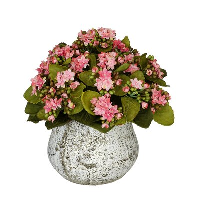 Artificial Kalanchoe