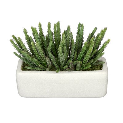 Artificial Organ Pipe Cactus Plant Decorative Vase Base Color: White
