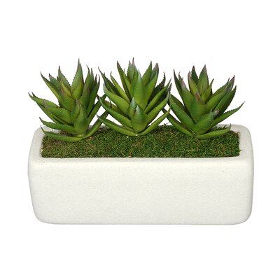 Artificial Green Aloe Plant in Decoratiove Vase Base Color: White