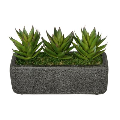 Artificial Green Aloe Plant in Decoratiove Vase Base Color: Black