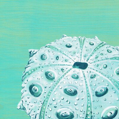 'Teal Urchin' by Karin Grow Graphic Art on Wrapped Canvas in Blue Size: 18 H x 18 W x 1.5 D