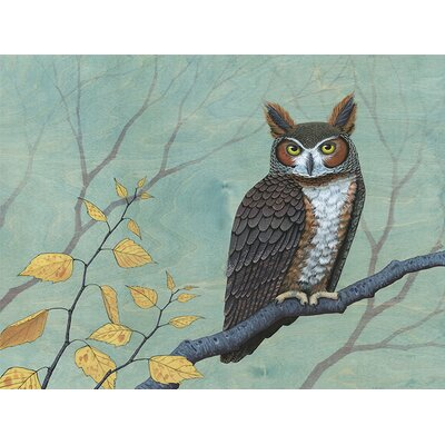 'Owl and Birch' by Kate Halpin Painting Print on Canvas Size: 24 H x 30 W