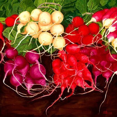 'Radishes' by Judith Jarcho Painting Print on Canvas Size: 14 H x 14 W x 1.5 D