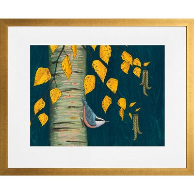 'Nuthatch Under Birch Leaves' by Kate Halpin Framed Painting Print