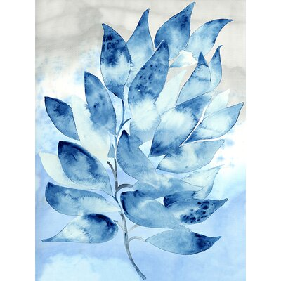 Coastal Watercolors - Seaweed by Shannon Newlin Graphic Art on Canvas