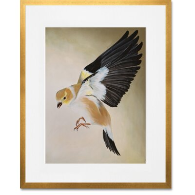 Flighted Finch by Ashley Dietrich Framed Painting Print in Brown