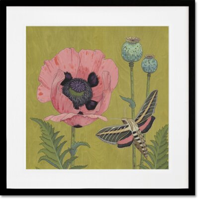 Enchanted Sphinx Moth by Kate Halpin Framed Painting Print in Color Size: 27 H x 27 W