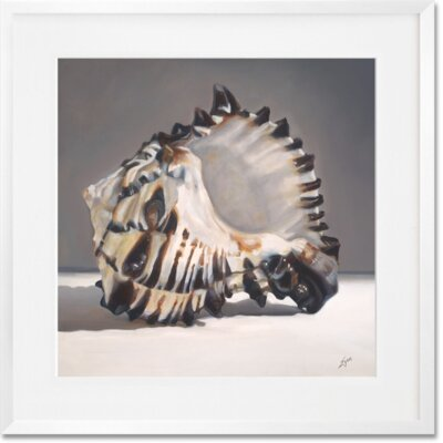 "'Tiger Shell' Framed Painting Print Size: 20"" x 20"" CU2463"
