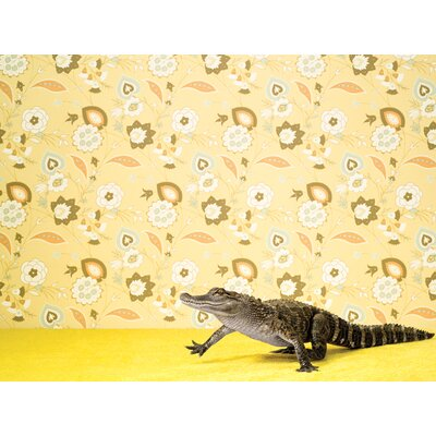 'Alligator On Yellow' Photographic Print on Wrapped Canvas Size: 10