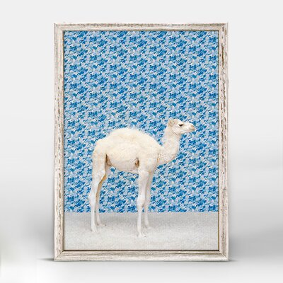 'Camel On Blue' Framed Photographic Print on Canvas