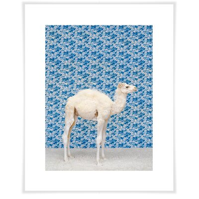 'Camel on Blue' by Catherine Ledner Photographic Print on Paper Size: 12.5