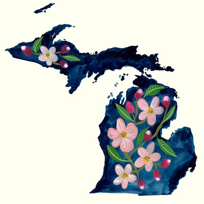 'State Flowers - Michigan' Acrylic Painting Print Size: 10
