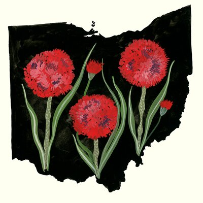 'State Flowers - Ohio' Acrylic Painting Print Size: 10