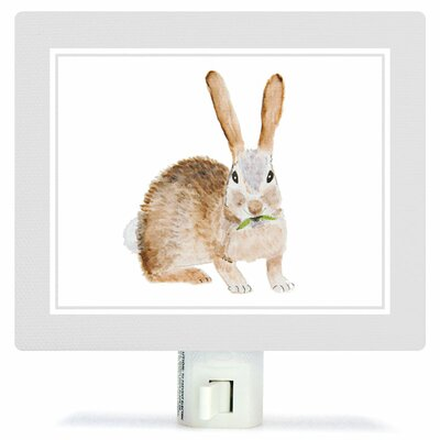 Animal Kingdom - Rabbit by Brett Blumenthal Canvas Night Light