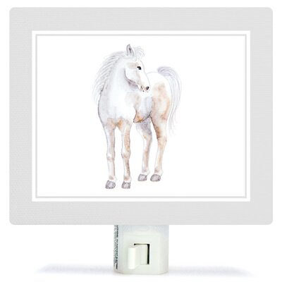 Animal Kingdom - Horse by Brett Blumenthal Canvas Night Light