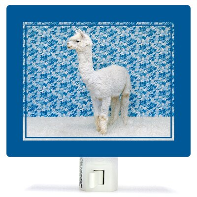 Llama on Blue by Catherine Ledner Canvas Night Light
