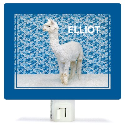 Llama On Blue by Catherine Ledner Personalized Canvas Night Light