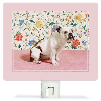 Bulldog by Catherine Ledner Canvas Night Light