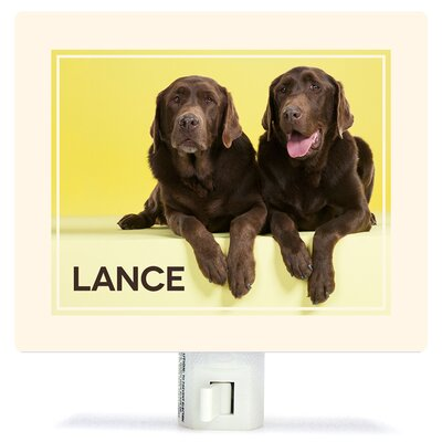 Chocolate Labs On Yellow by Catherine Ledner Personalized Canvas Night Light