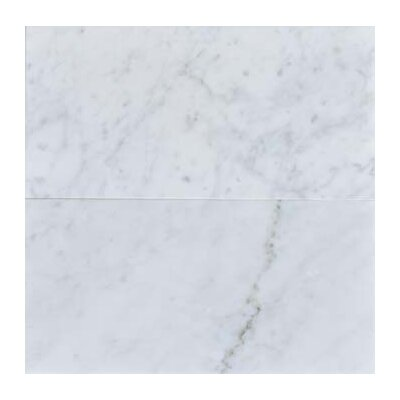 Carrara 6 x 12 Honed Marble Field Tile in White