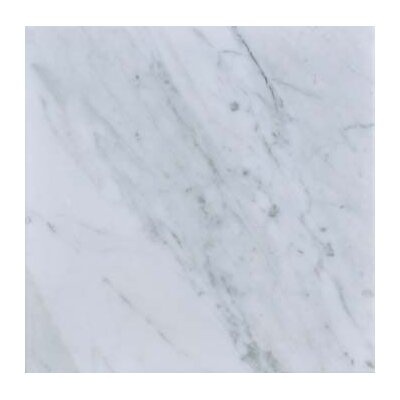 Carrara 12 x 12 Polished Marble Field Tile in White