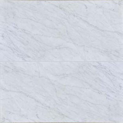Carrara 12 x 24 Polished Marble Field Tile in White