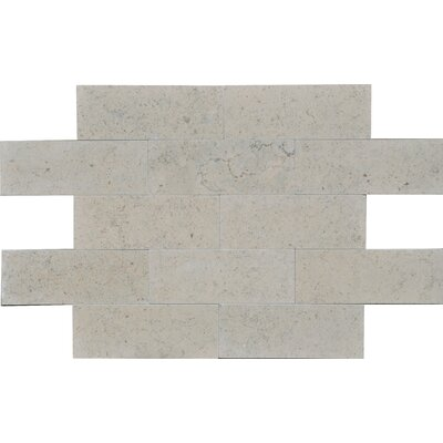 Duvel 3 x 8 Limestone Subway Tile in Gray