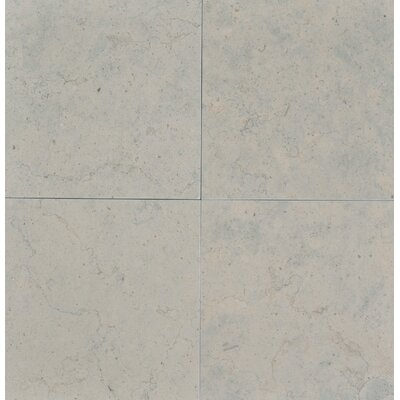 Duvel 12 x 12 Limestone Field Tile in Gray