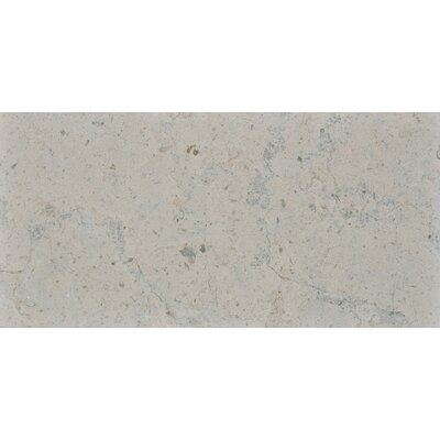 Duvel 12 x 24 Limestone Field Tile in Gray