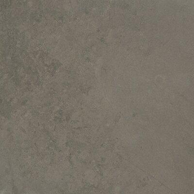 12 x 24 Limestone Field Tile in Sable