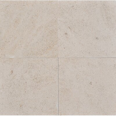 12 x 12 Limestone Field Tile in Sable